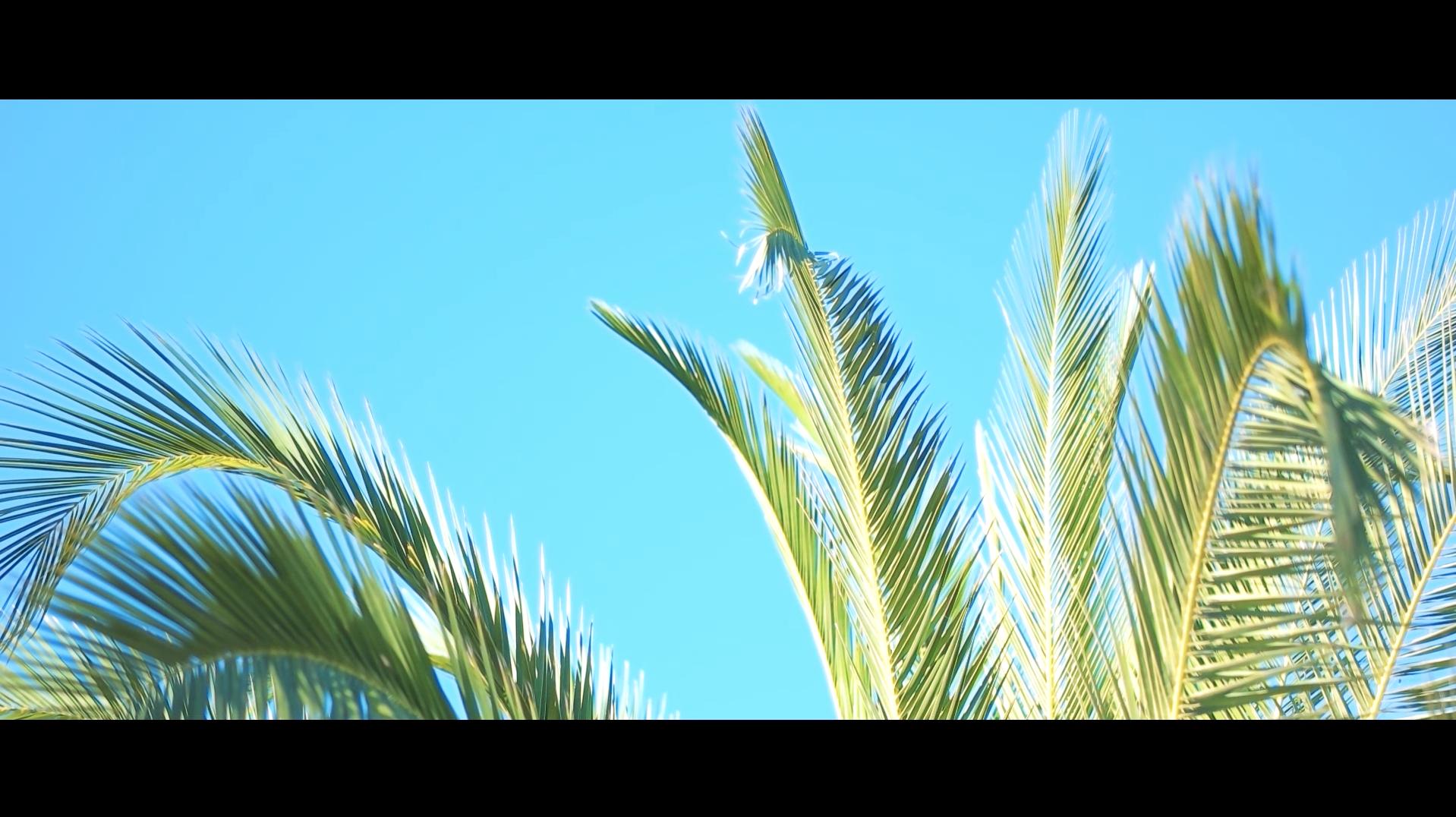 Bildschirmfoto 2017-01-24 um 11.19.13